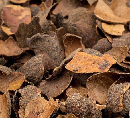 Cacaodoppen 2m³ incl bezorgen